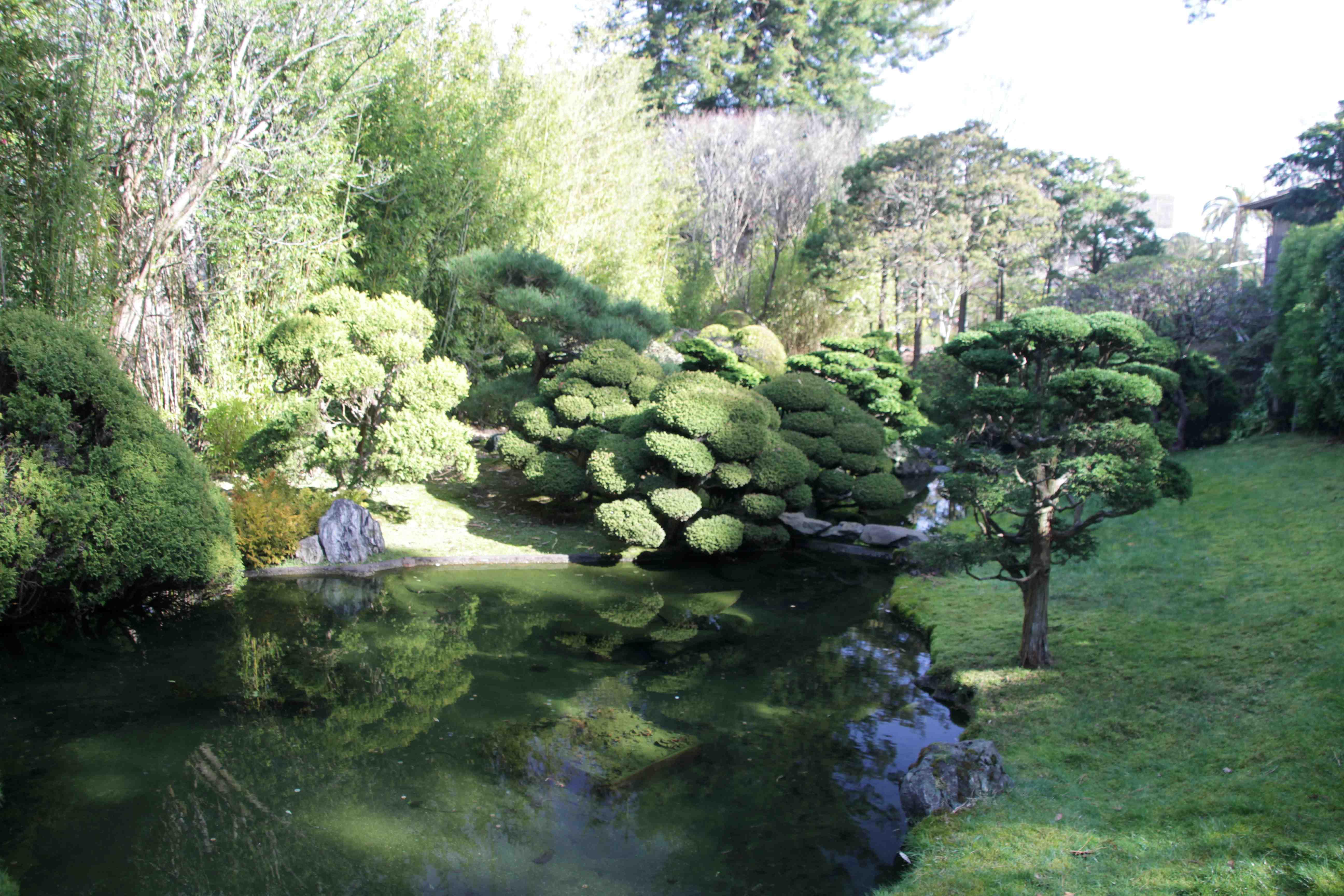 Japanese Tea Garden Laidback Gardener