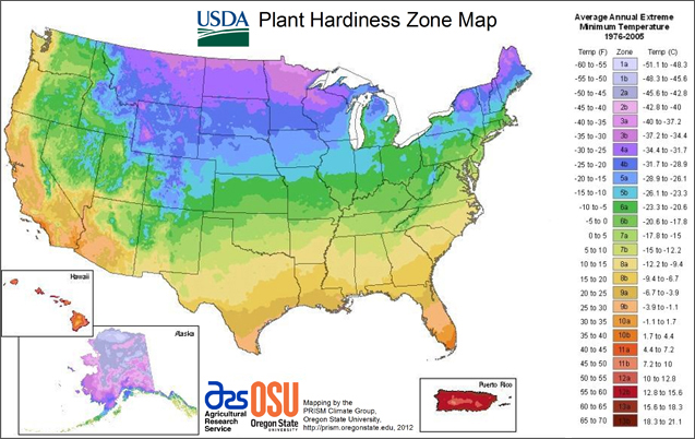 Comparing US and Canadian Hardiness zones | Laidback Gardener