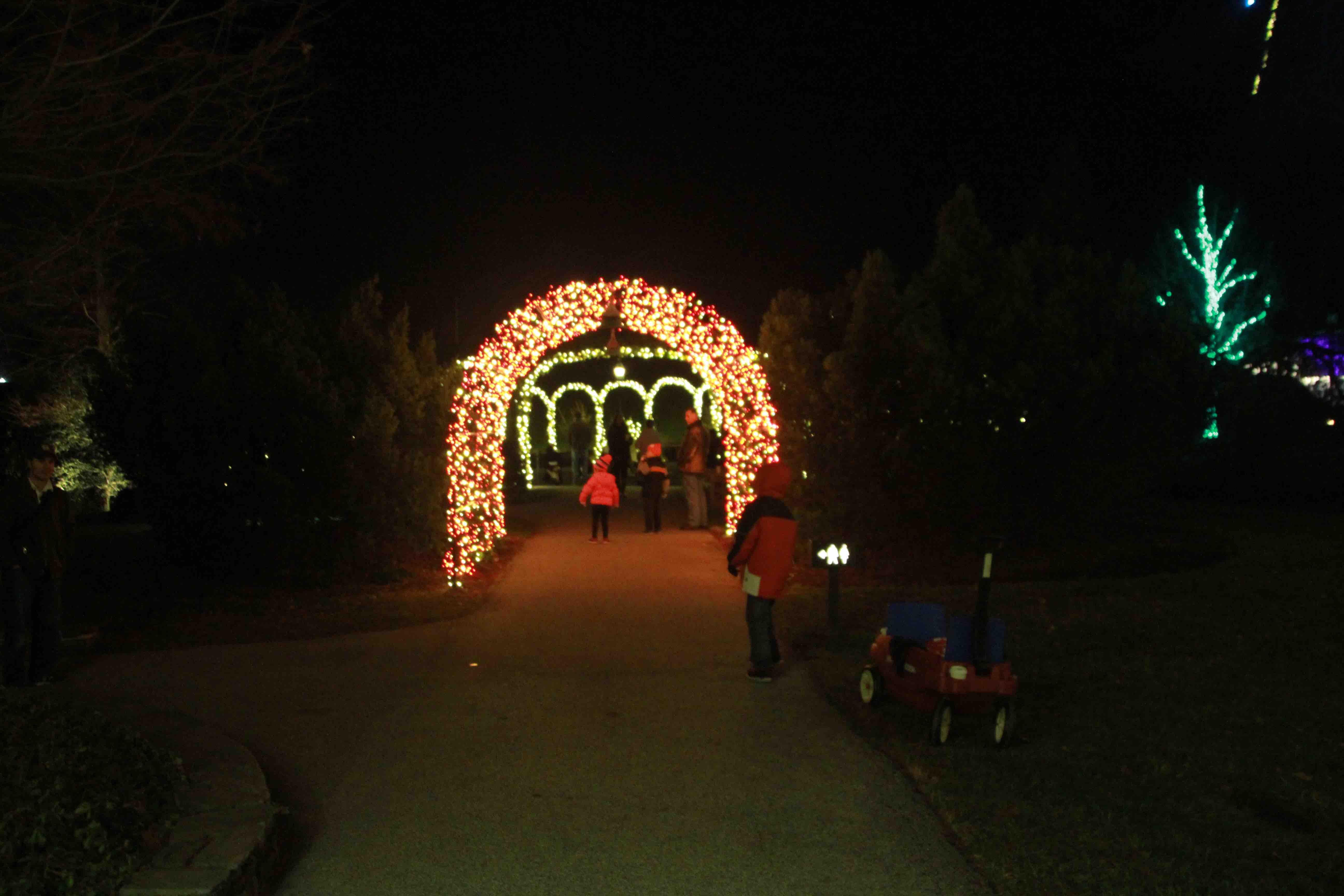 Longwood Gardens\' Christmas Show: Breathtaking! – Laidback Gardener
