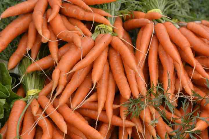 Bunches of carrots for sale at the Farmer's Market