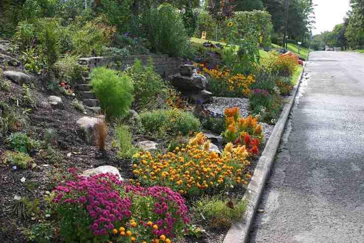 Horticom Jardin automne.jpg