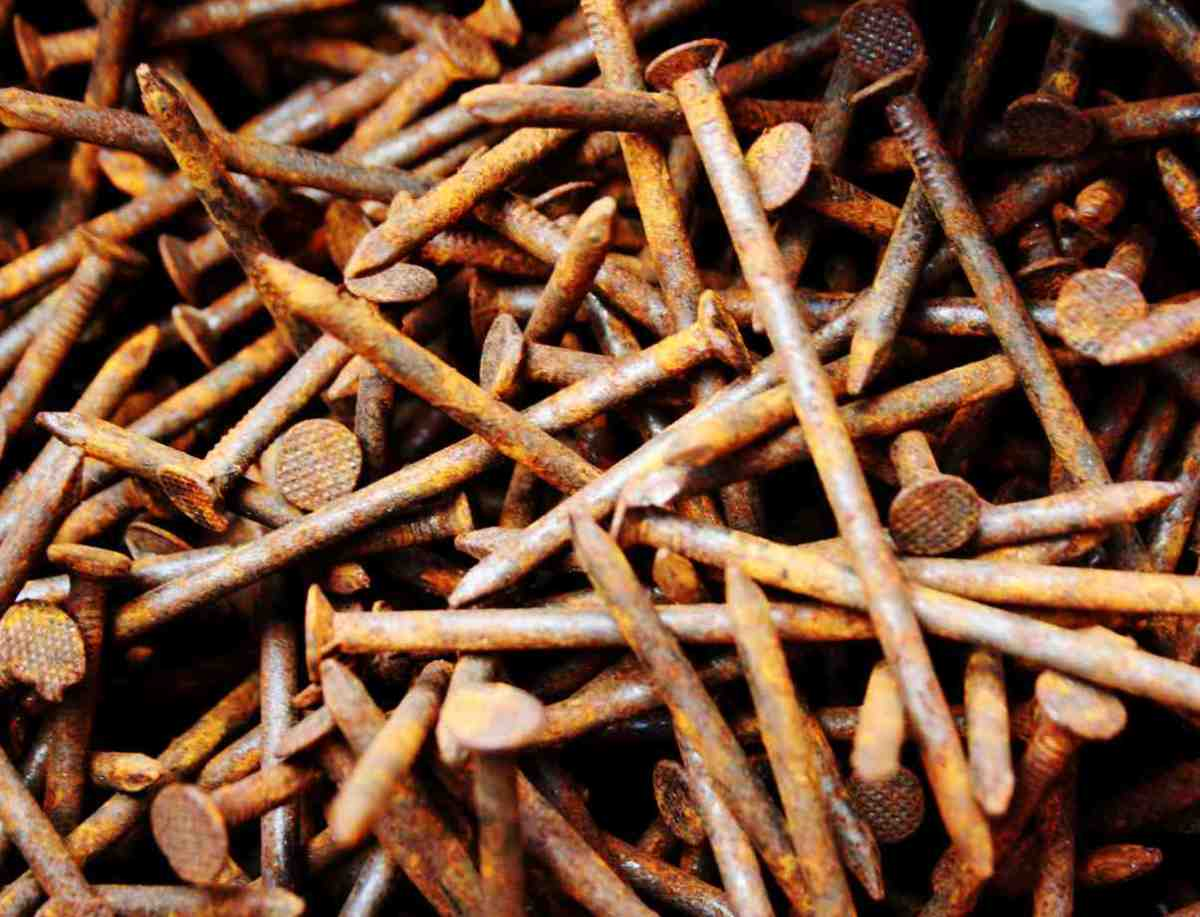 The Rusty Nail Myth | Laidback Gardener