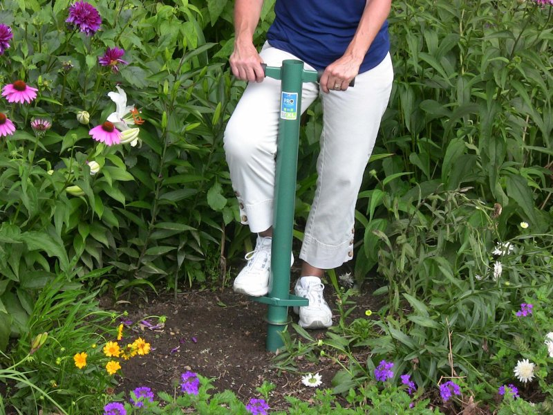 My New Favorite Bulb Planting Tool Laidback Gardener