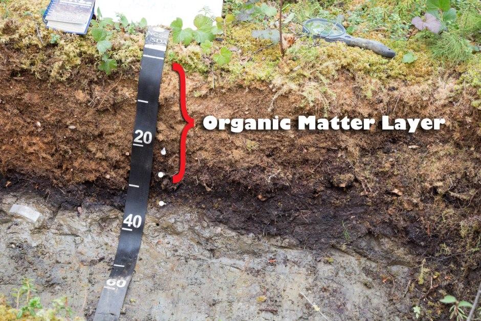 20181222B Soil Science Society of America jpg