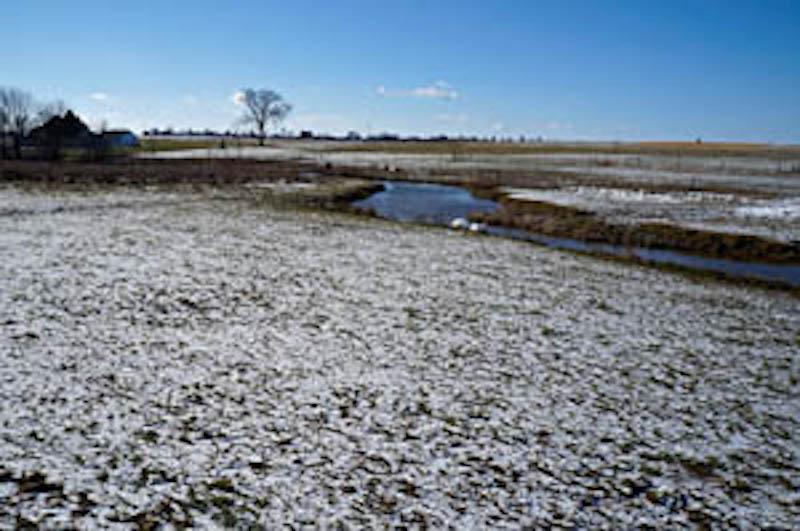 21081222C Soil Science Society of America.jpg
