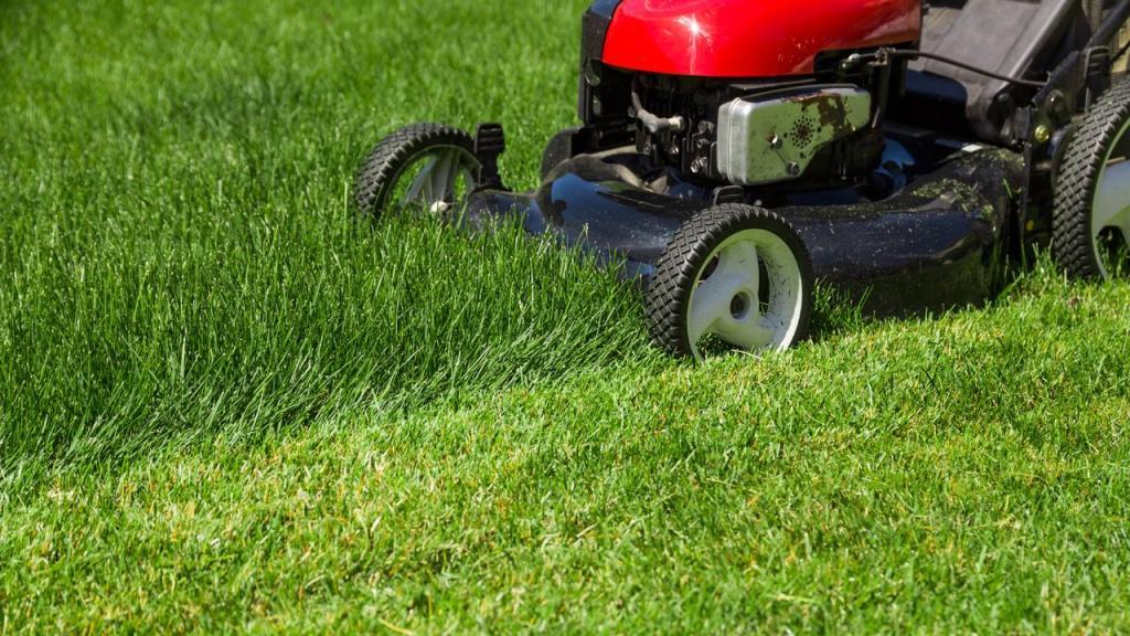 Lawn mower mowing lawn