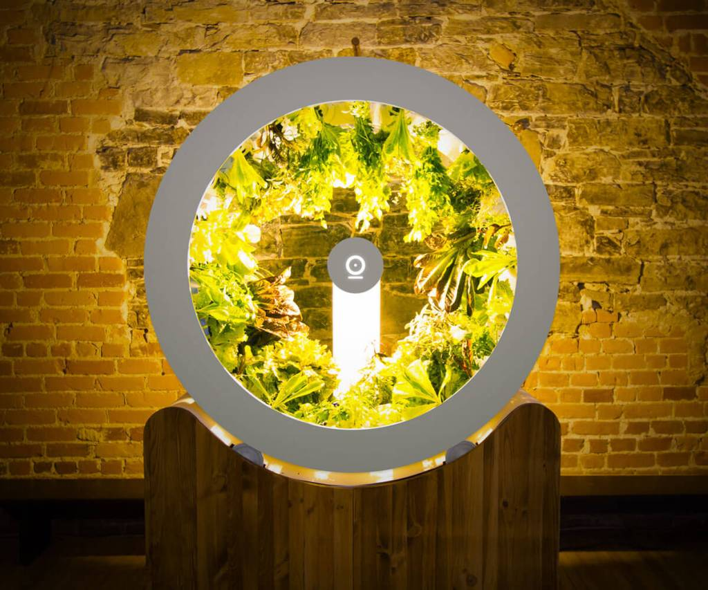 Rotating light garden with vegetables