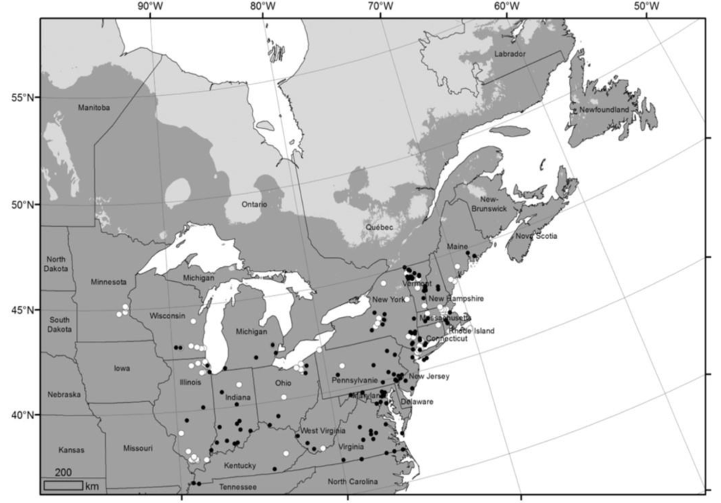 map of jumping worm distribution in Northeastern North America