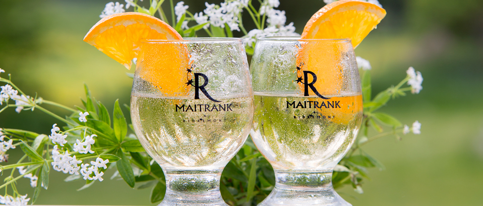 Two glasses of Maitrank (pale yellow) with orange slices and sweet woodruff stems in bloom.