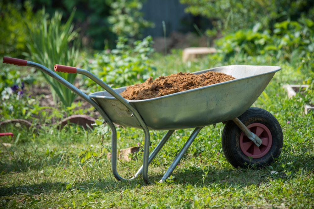 Wheelbarrow filled with soil on a lawn
