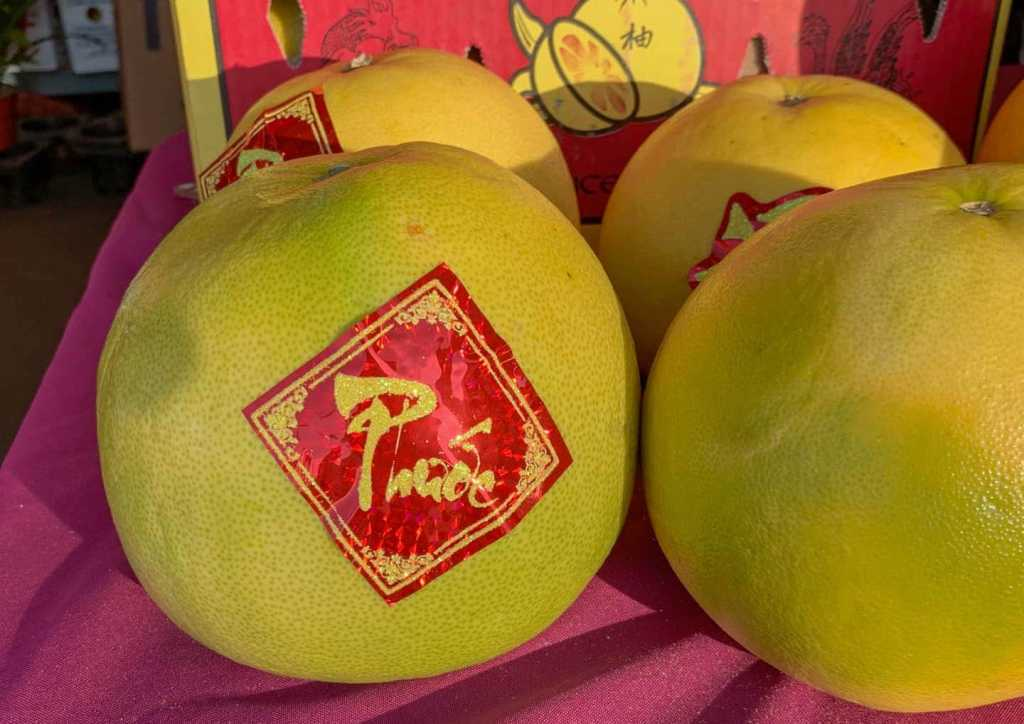 Pomelo fruits with bright red label.