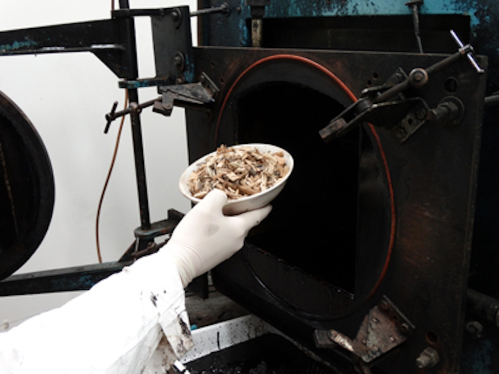 Bowl of fruitwood chips being put into a pyrolyzer.
