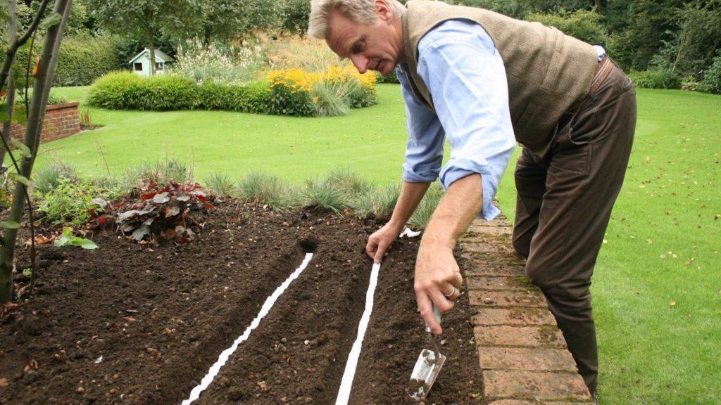 Man applying seed tape in a raised vegetable bed.