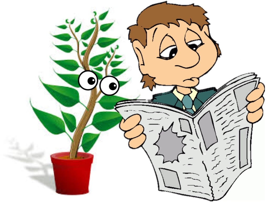 Man reading newspaper while observed by a curious houseplant.