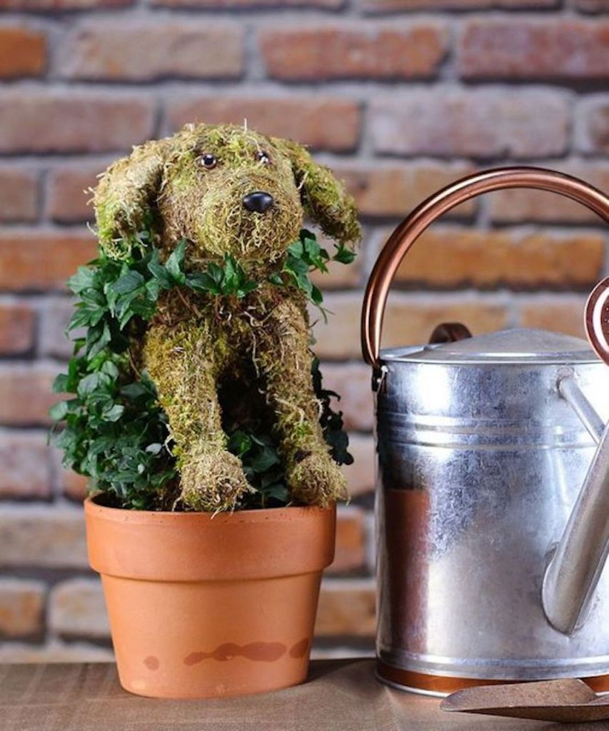 Topiary dog in a pot with ivy growing on it.