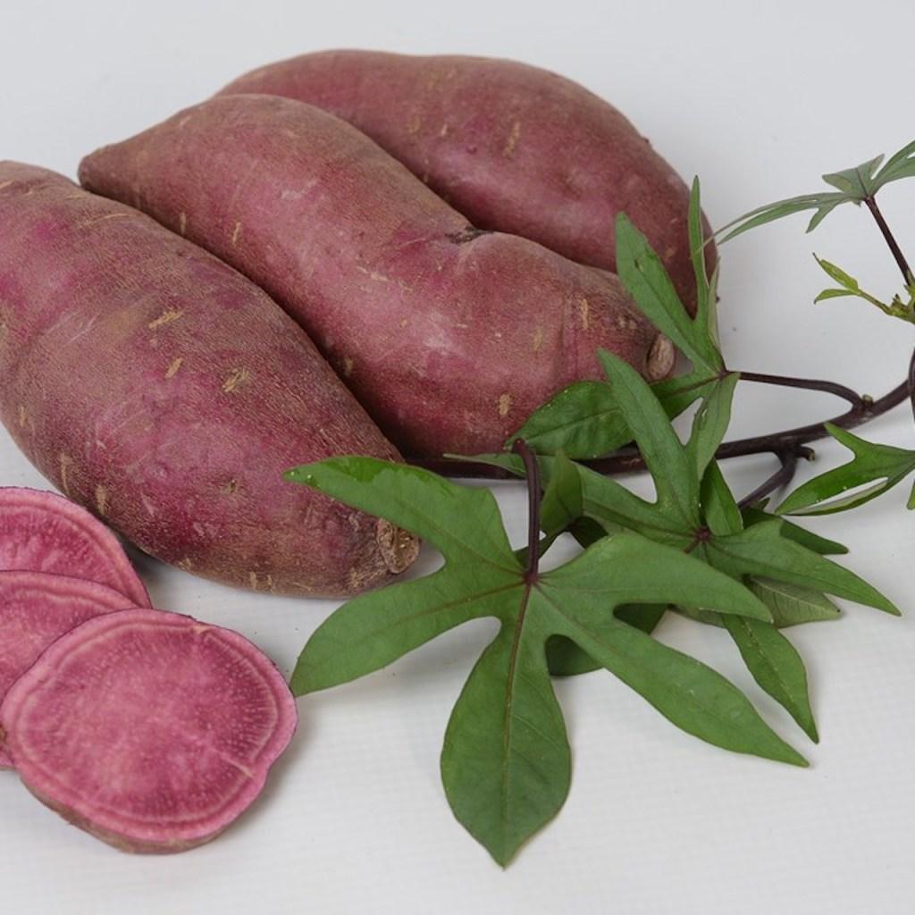 Tahiti sweet potato showing greenish purple cut leaves and purple tuber.