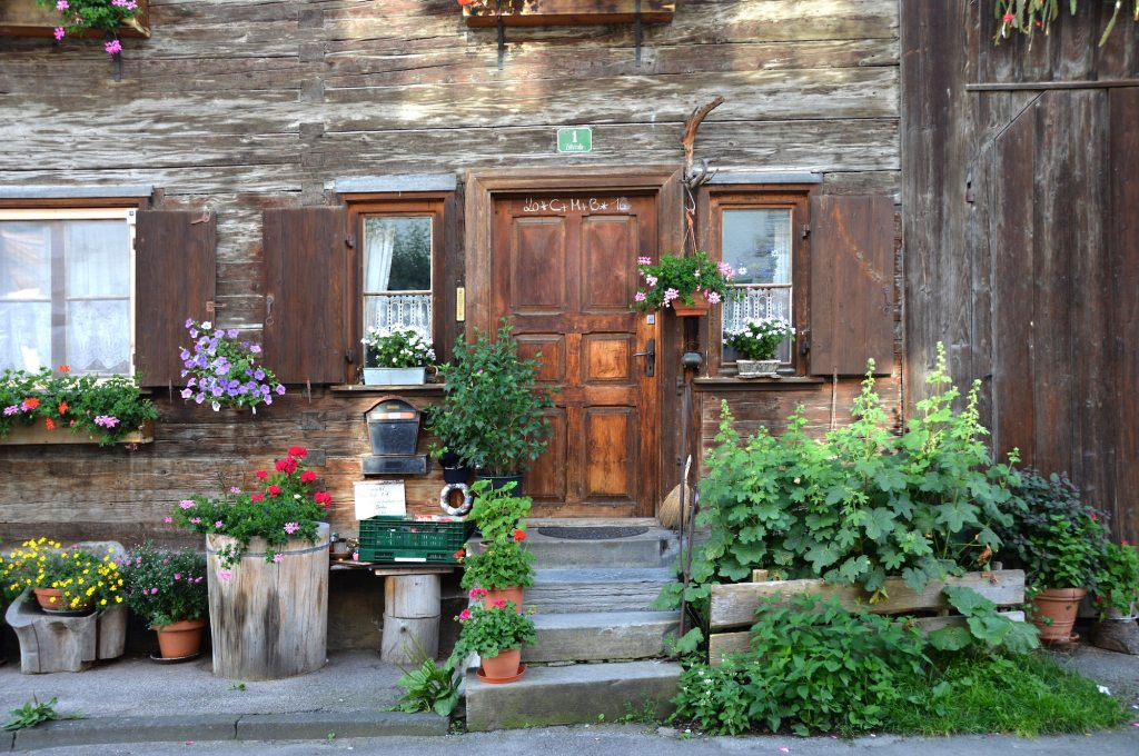 Front door with plants