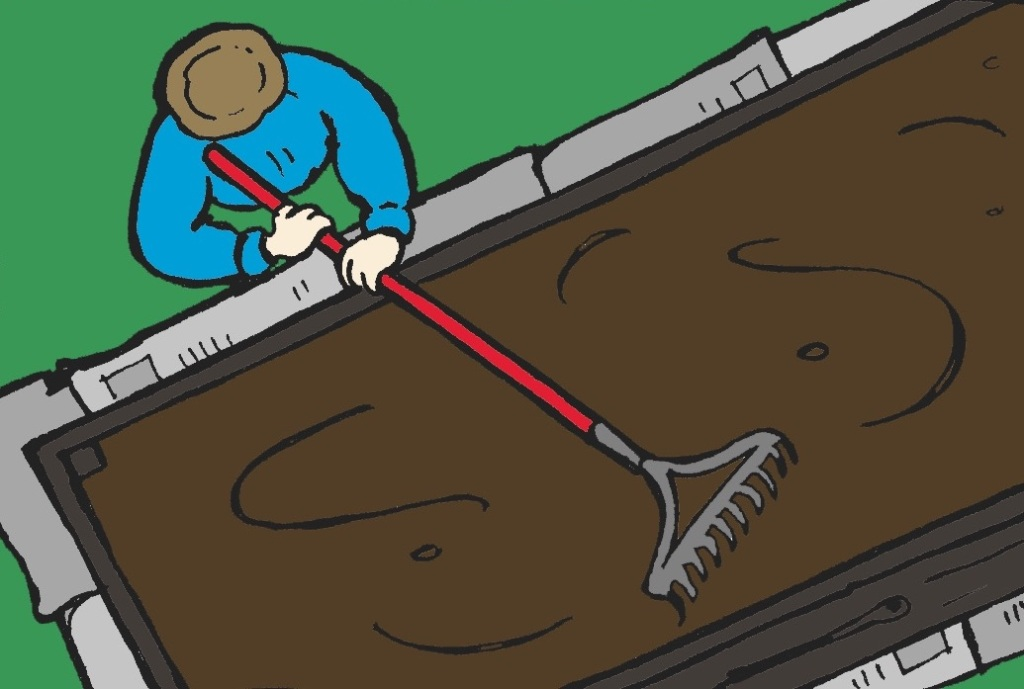 Level the soil with a rake.