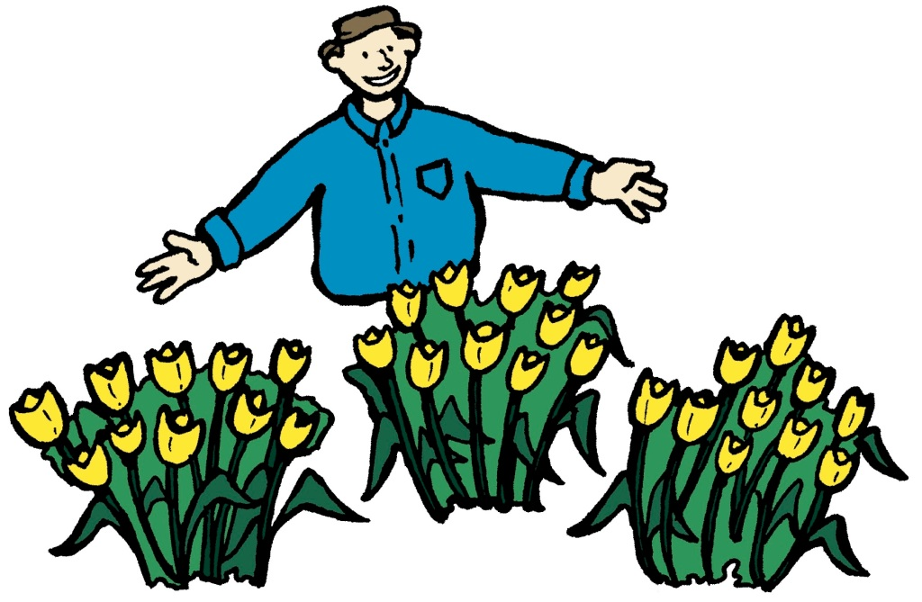 Illustration of a man showing how to plant by grouping plants to create a better effect.