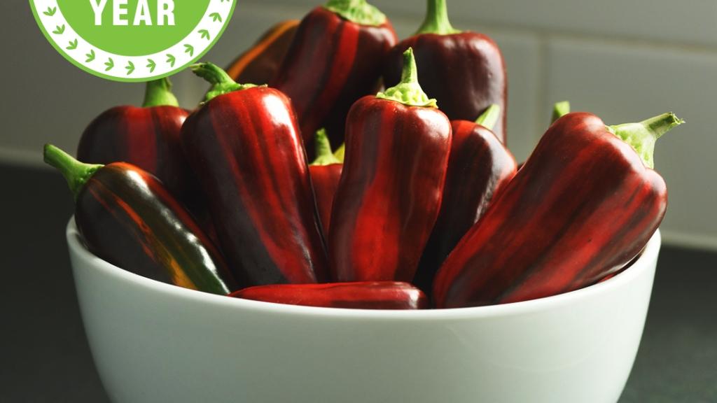 Mocha Swirl peppers in a white bowl