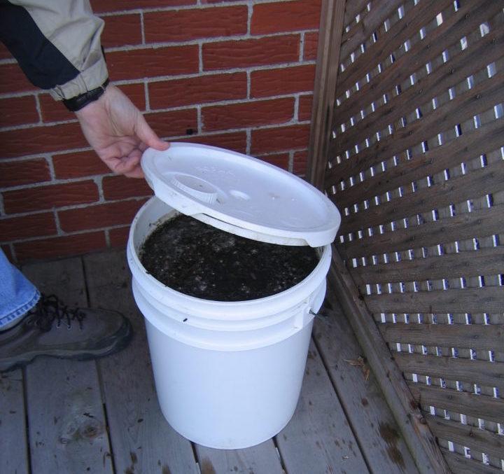 Preparation of compost tea in a bucket.