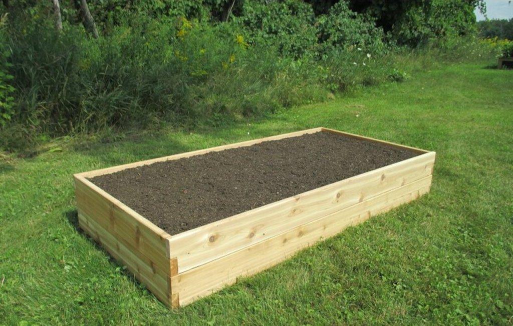 Raised bed of good soil.