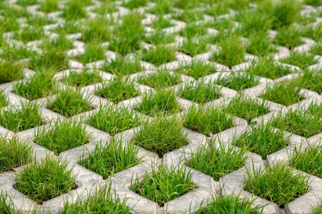 Grass block pavers planted with grass