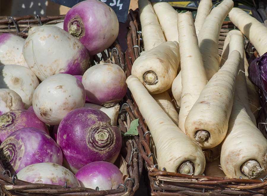 Round turnips and long turnips.