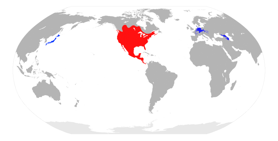 Map showing range of raccoons all over the world.